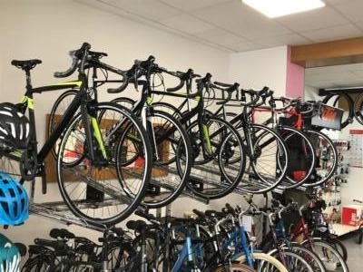 Viele neue Rennräder