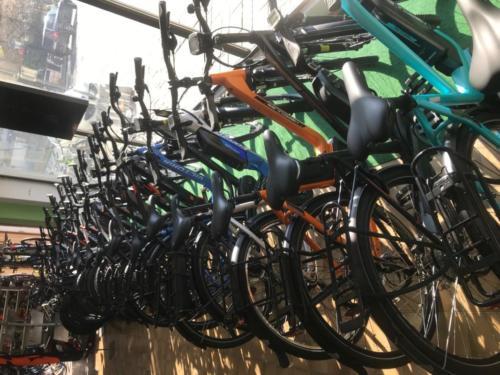 Neueste E-Bikes & Bikes